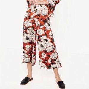 Zara culottes palazzo wide leg pants